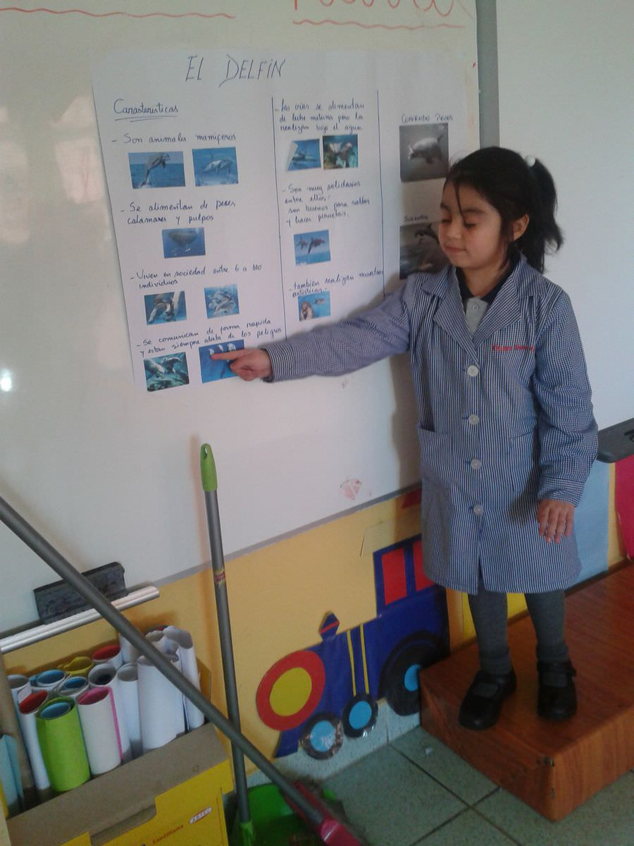 disertaciones  u2013 fundaci u00f3n educacional la milagrosa